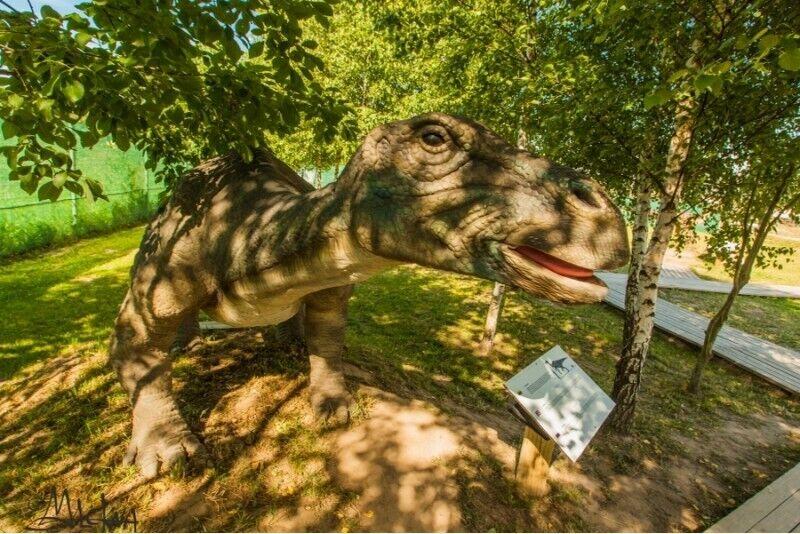 """Dzień rozrywek w parku """"Dino"""" i kibiny dla 3-osobowej rodziny na Litwie"""