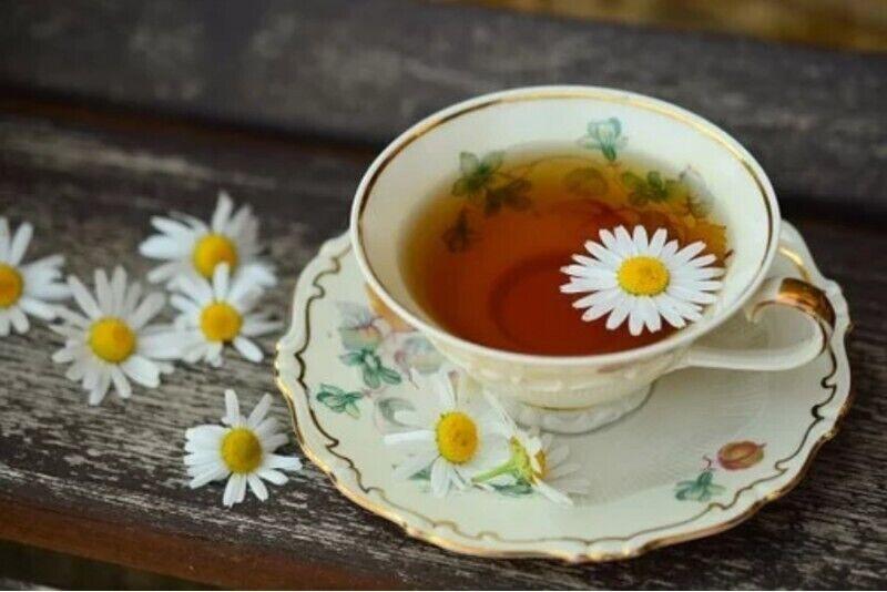 Degustacja herbat świata z pokazem parzenia w Krakowie