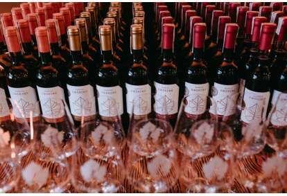 Wyprodukuj własne wino w Winnicy Dwórzno