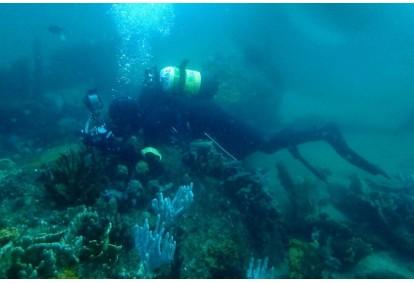Kurs nawigacji podwodnej z First Dive