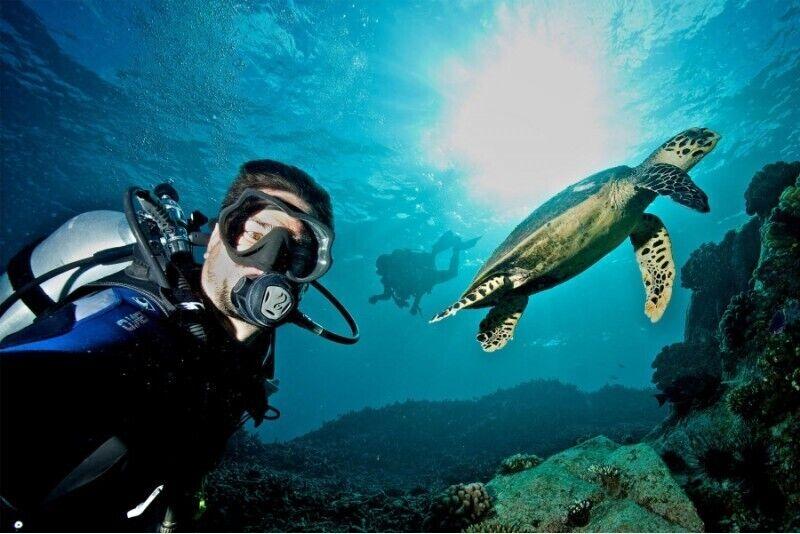 Kurs fotografii podwodnej i filmowania z First Dive
