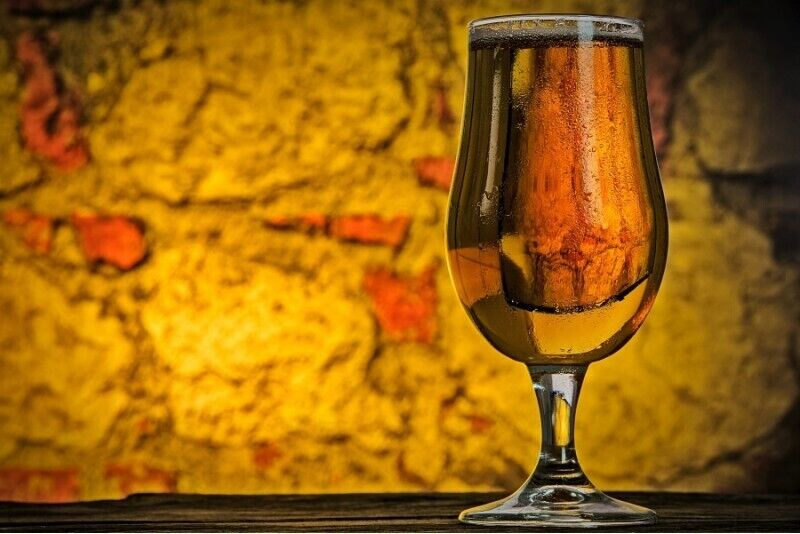 Degustacja piwa w Piotrkowie Trybunalskim