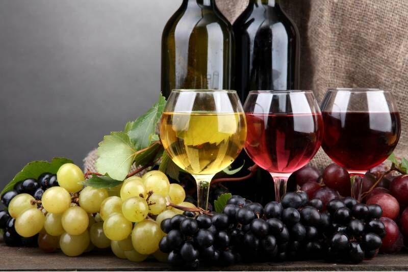 Zwiedzanie winnicy Witaj Słońce z degustacją i winem w prezencie